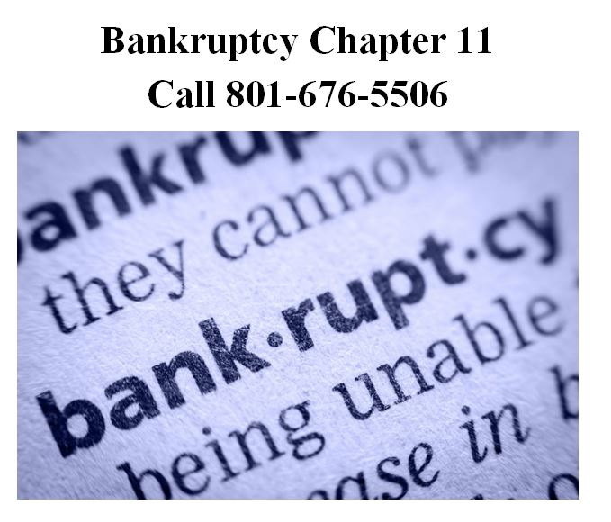 Chapter 11 Bankruptcy Bankruptcy Chap...
