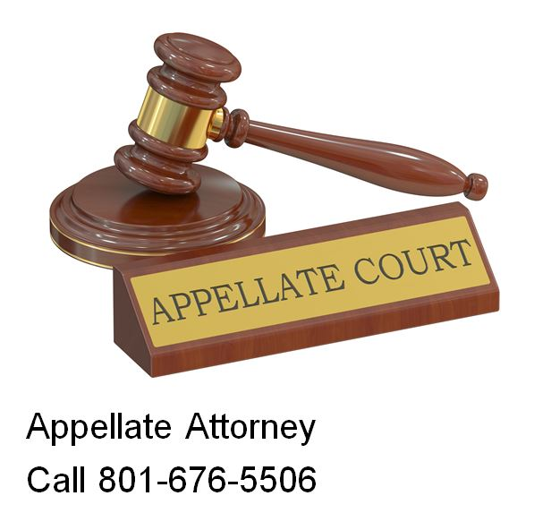 how to become an appellate attorney