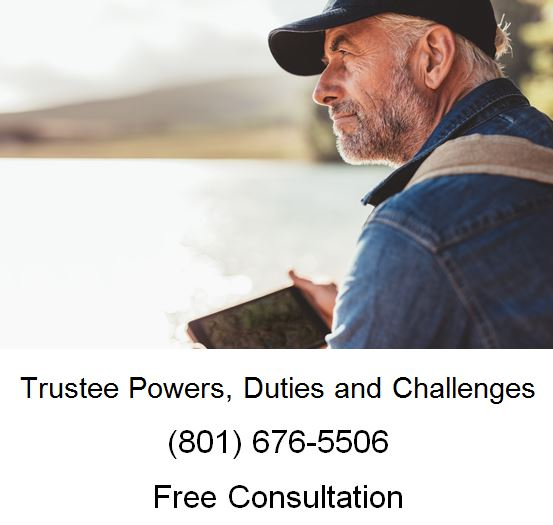 trustee power duties and challenges