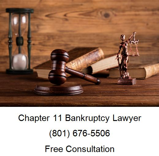 chapter 11 bankruptcy lawyer
