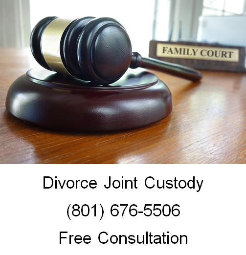 divorce joint custody