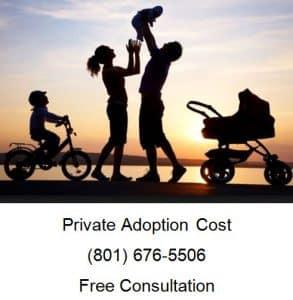 private adoption cost