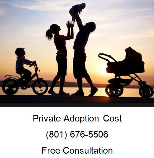 private adoption cost