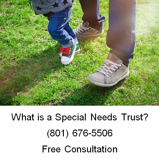 what is a special needs trust