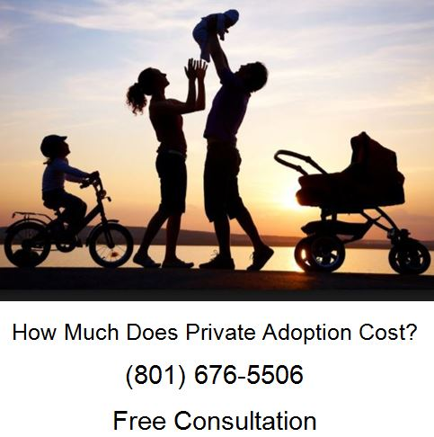 how much does private adoption cost