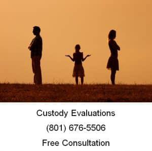 custody evaluations