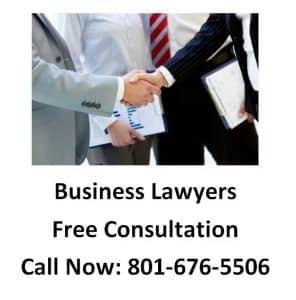 Strategic Alliance Lawyer