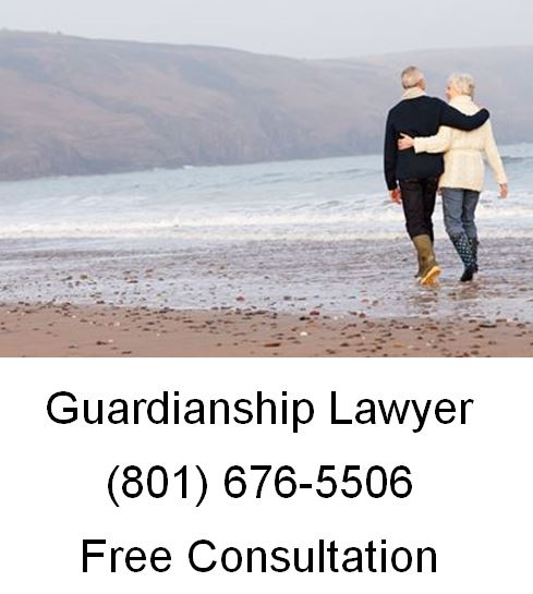 Law Firm for Guardianships