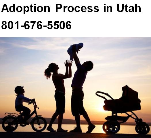 Private Adoption Lawyer