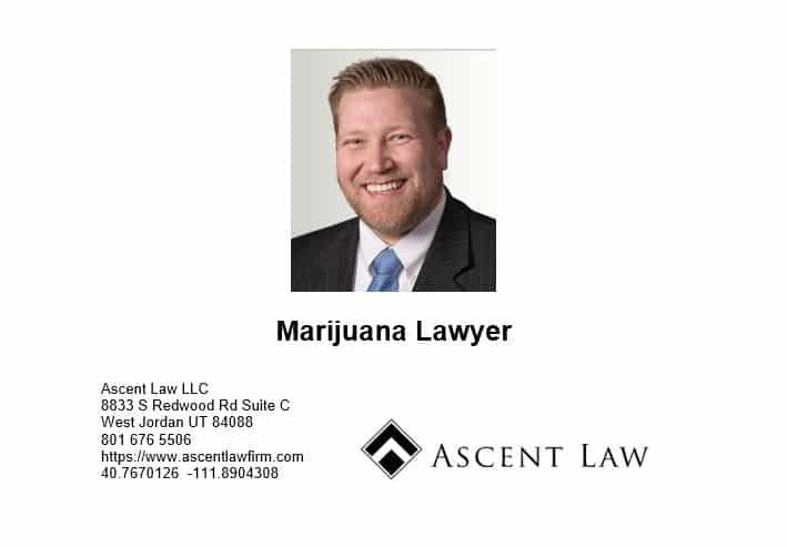 Marijuana Lawyer